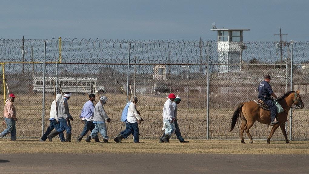 частная тюрьма США